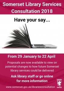 Libraries Consultation poster